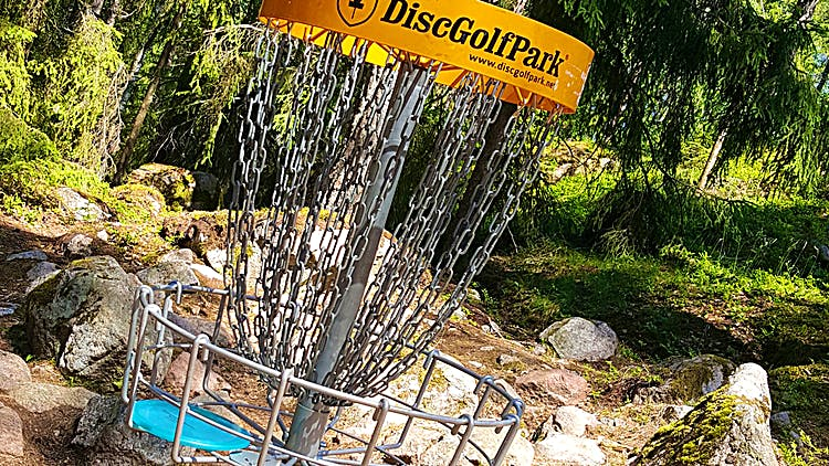 En korg vid en discgolfbana i skogen.