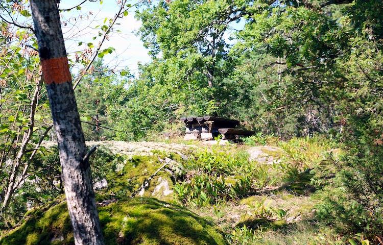 Rastplats med bord och bänkar. Orange ledmarkering på träd.