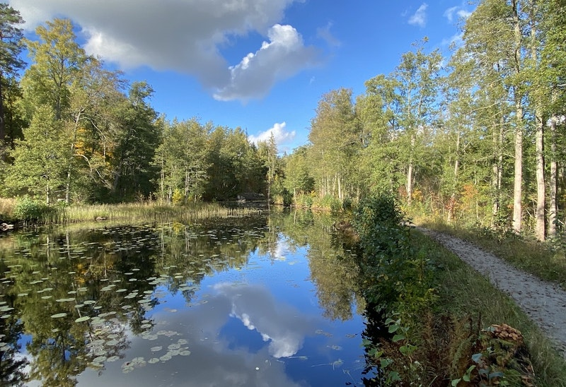 Grissbach kanal