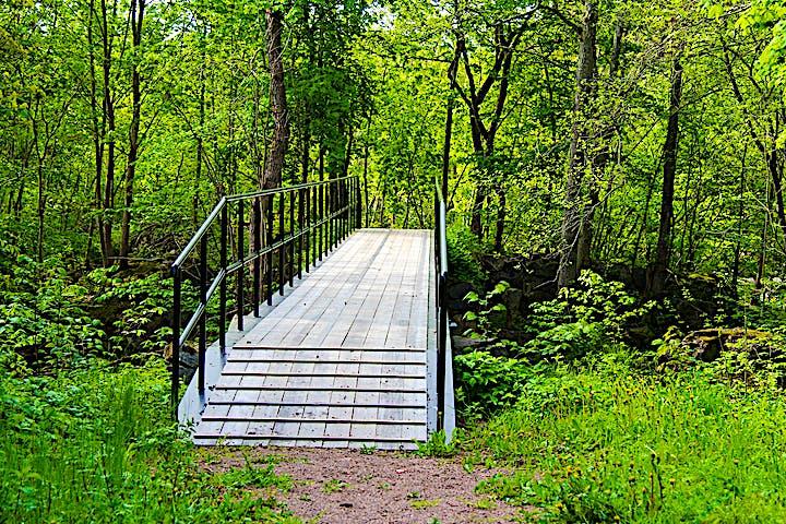 Bro som leder över ån in i skogen.
