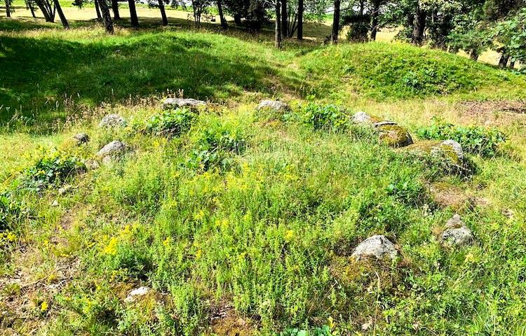 Fornvård och naturvård i samklang när gräset är slaget