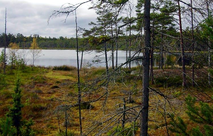 Långviksträsk. Foto: Länsstyrelsen Stockholm.