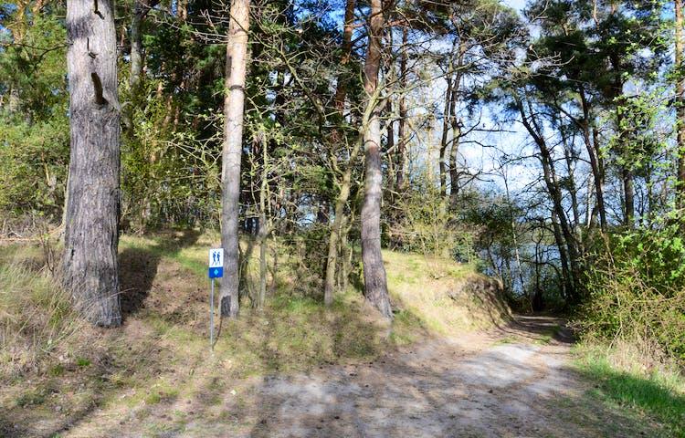 Väg till parkering vid södra delen av reservatet, Foto: Monica Johnson