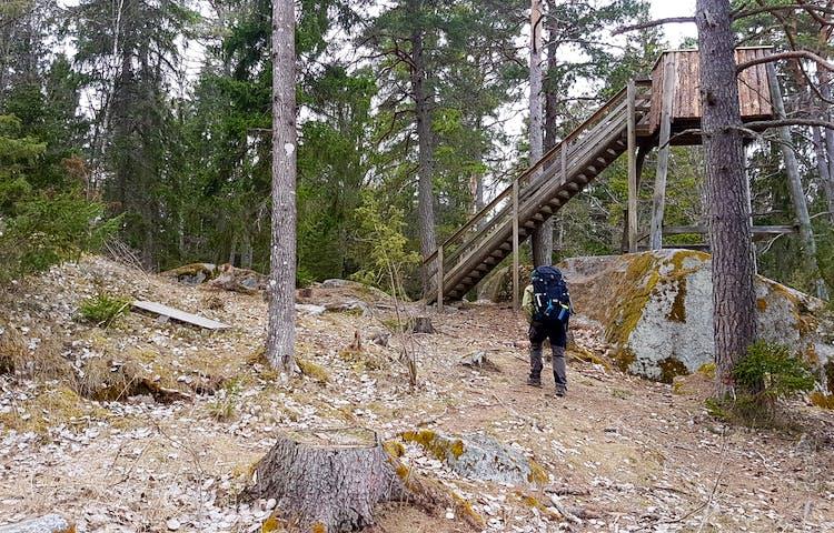 En person går uppför en backe till fågeltornet. En hög trappa leder till plattformen.