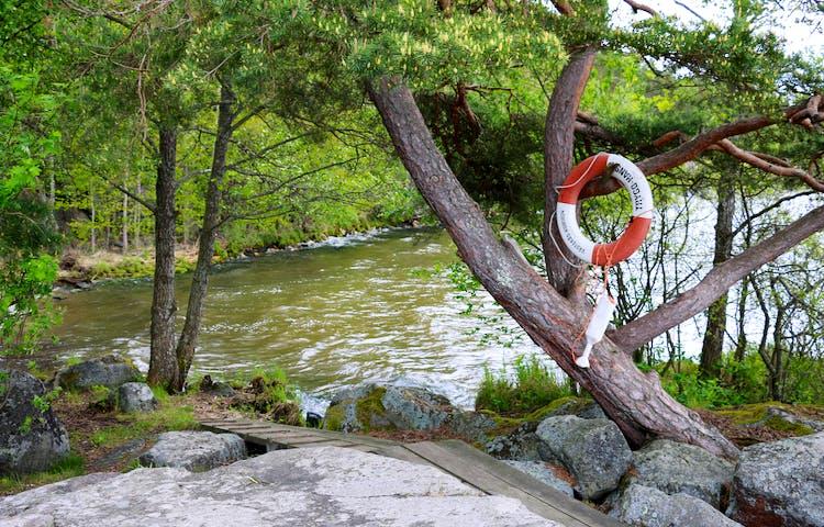 Från en klipphäll går en träspång ner mot viken. I ett träd hänger en livboj.