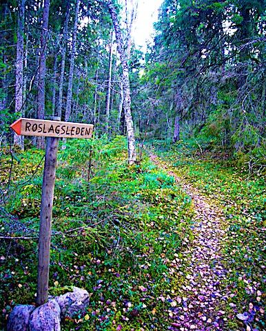 Roslagsleden passerar genom reservatet. Foto: Länsstyrelsen Stockholm