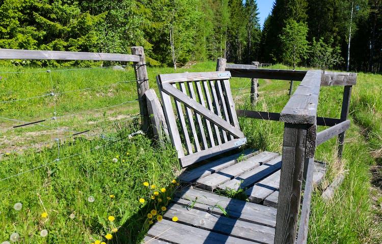 En träkonstruktion med en grind, räcken och träplankor på marken som står på grönt gräs bredvid en grusväg.