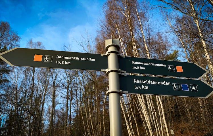 Skylt till vandringsled med träd och blå himmel i bakgrunden.