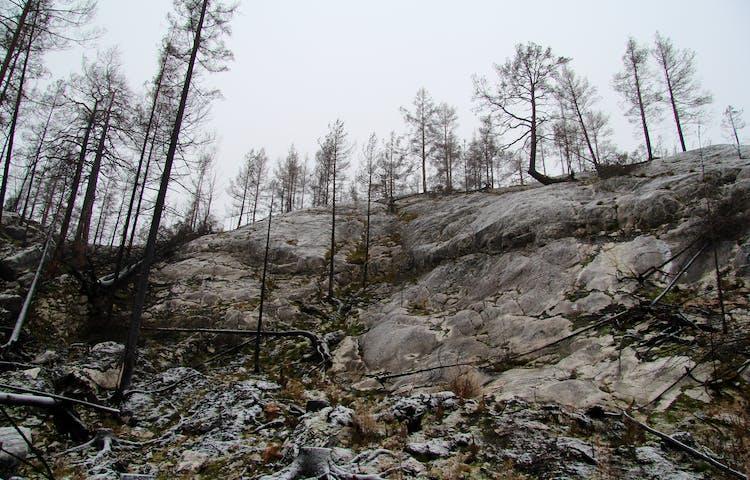 Nakna bergsklippor utan mossa eller jord.