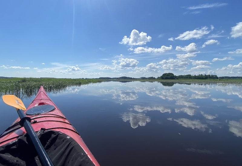 Svartån, Västerfärnebo - Salbohed - Fläckebo - Edens Garden