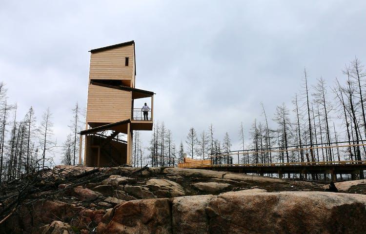 Utsiktstorn i trä och en ramp på Grävlingsberget.
