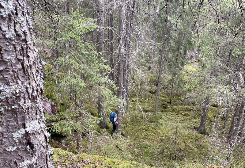 Fagersta - Landsbergstriangeln