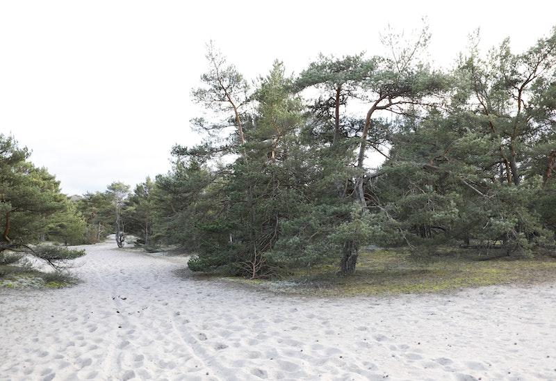 15 Kristianopel - Bröms | Blekingeleden