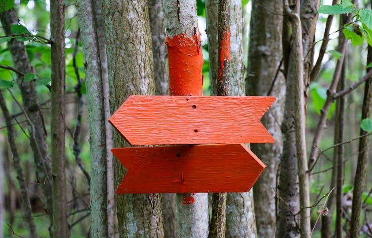 Två orange pilar som visar ledens riktning.
