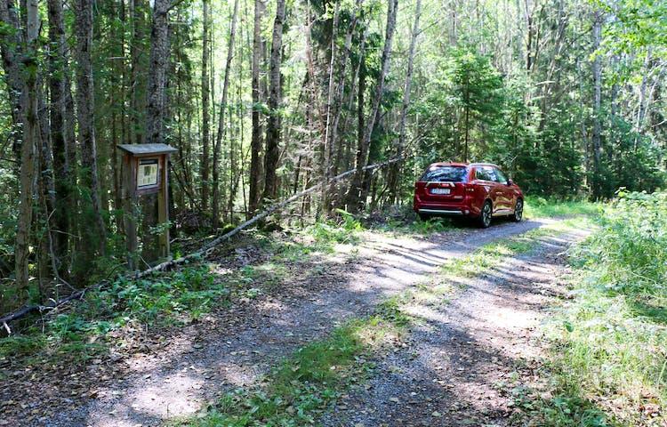 Bil parkerad längs skogsbilvägen.