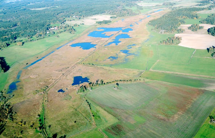 Flygbild över Angarnssjöängen.