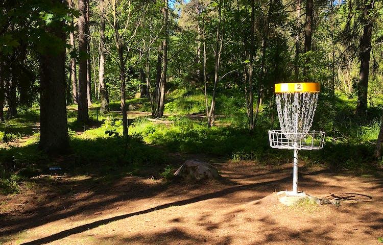 En korg på en discgolfbana i skogen.