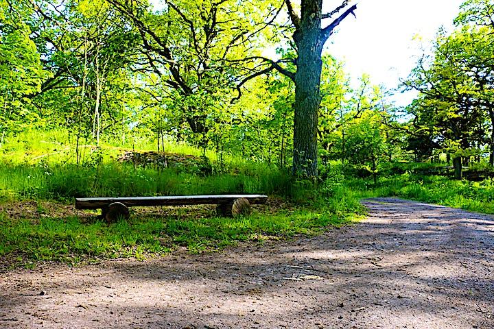 Intill en grusväg finns en bänk gjord av stockar placerad.