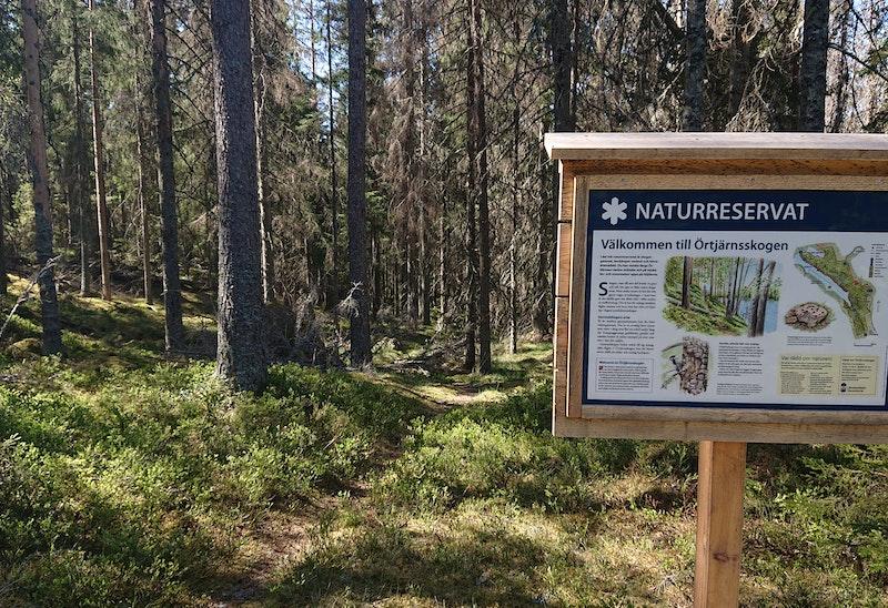 Informationsskylt för Örtjärnsskogen