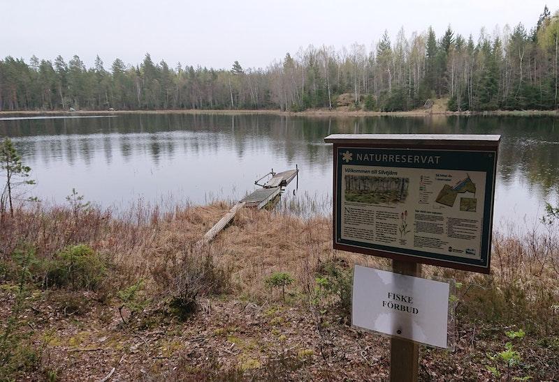Silvtjärn - Naturreservat