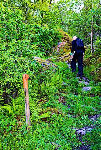 En person går uppför en stenig stig med orange pil på stolpe som visar vägen.