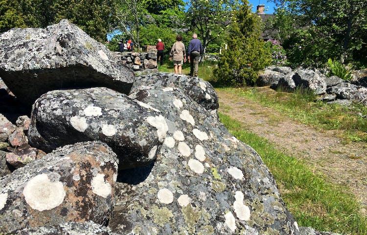 Några personer promenerar längs en stig mellan gärdsgårdar av sten. I bakgrunden finns många träd och mellan dem syns ett hustak med en skorsten.
