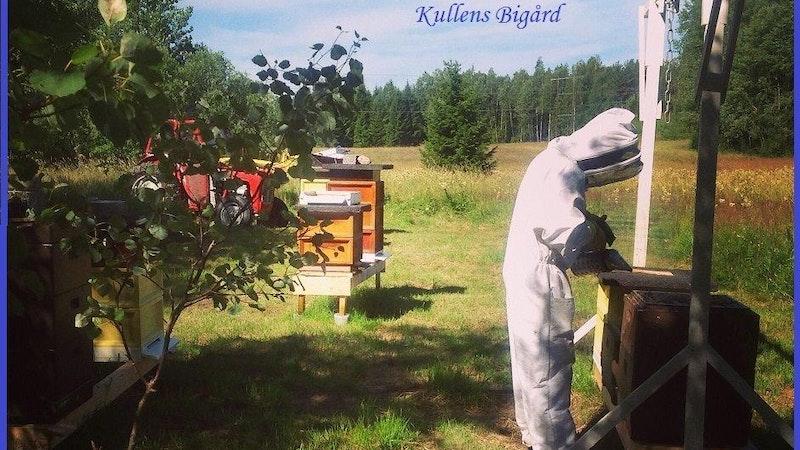 Kullens Bigård i Malsjö/Flokerud
