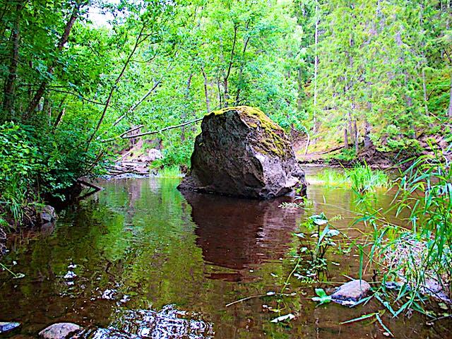 Stor sten mitt i Hedströmmen.