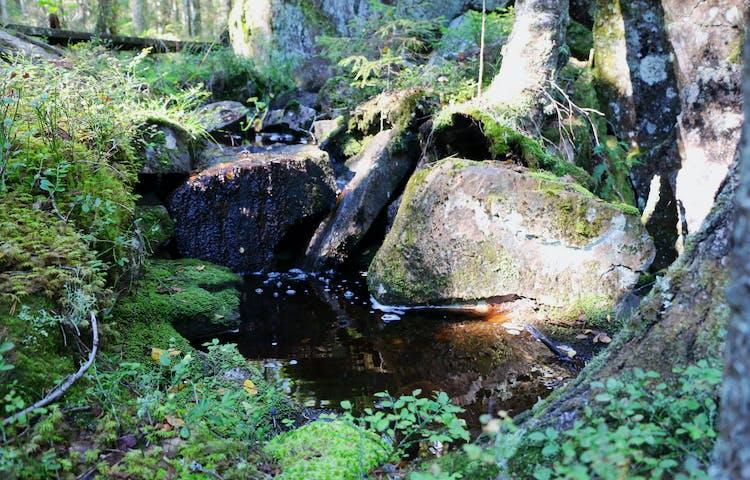 Bäck som rinner nedför stenar.