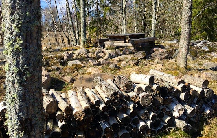 Träbord, träbänkar, ved och huggkubb.