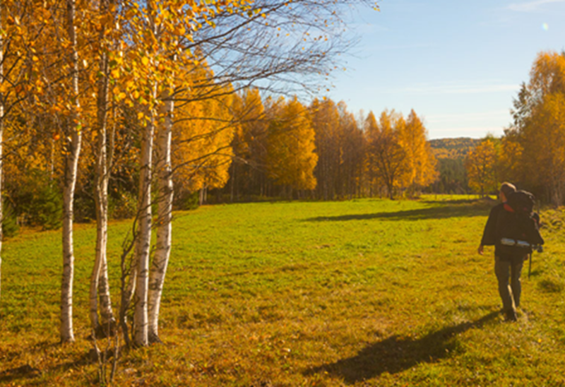 Gråmon - Tivedstorp, Bergslagsleden etapp 16