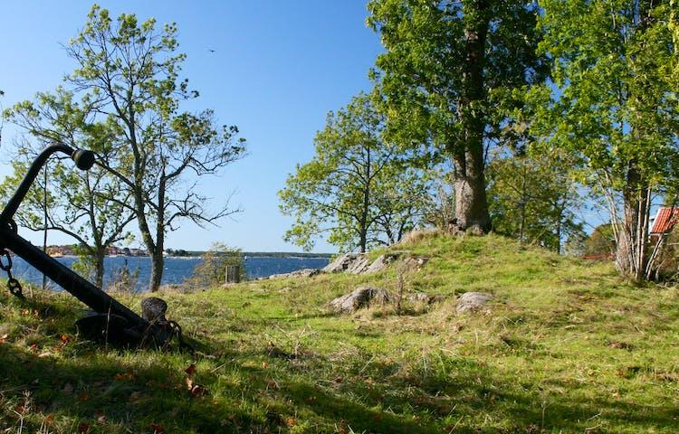 Kuperad gräsmark med många stenar. I bakgrunden ser man havet.