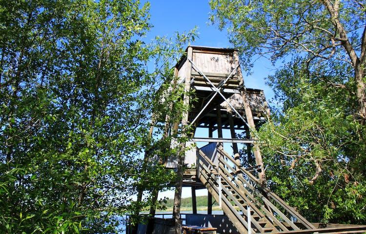 En bred spång med handräcken leder fram till ett fågeltorn vid Fyrisån. Fågeltornet har tre våningar och en trappa med handräcken går upp till andra våningen.