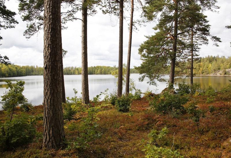 10 Ronneby Brunn - Skärsviken | Blekingeleden