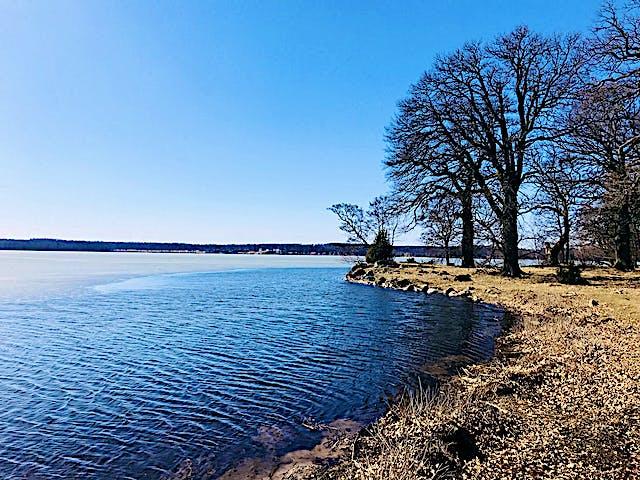 Väsby naturreservat, foto: Josefine Karlsson