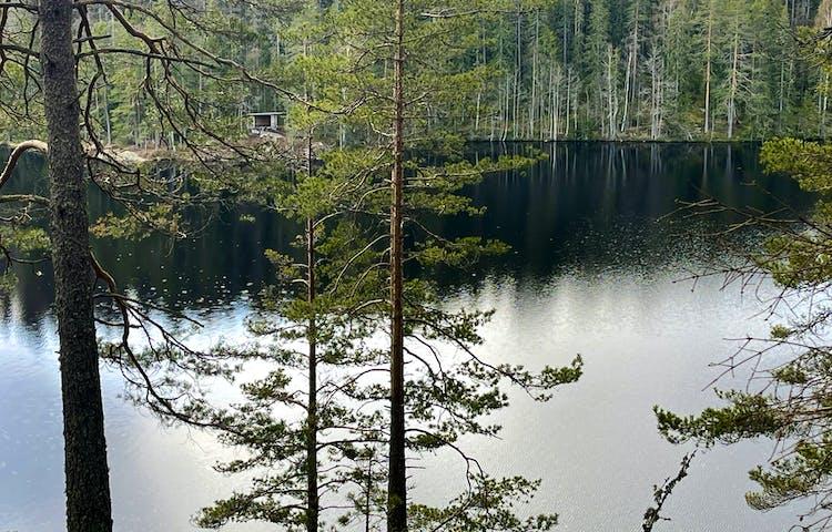 Utsikt över en sjö. På andra sidan syns ett vindskydd.