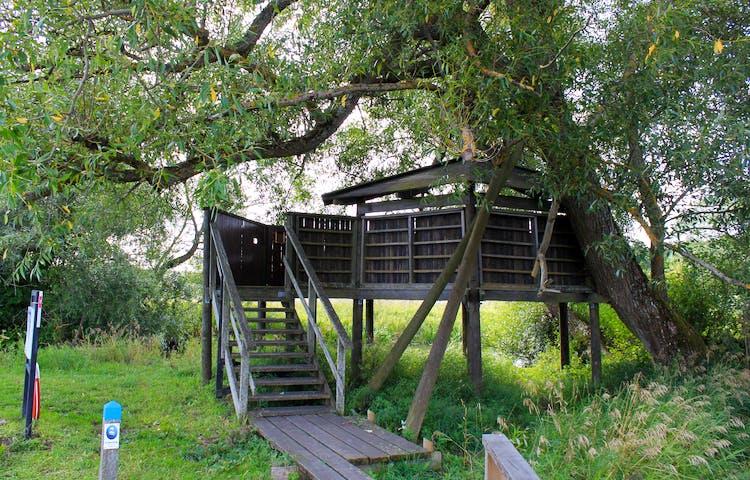 En smal spång går fram till en upphöjd plattform. En kort trappa med handräcken leder upp till plattformen som har höga väggar och ett tak över en del av plattformen.
