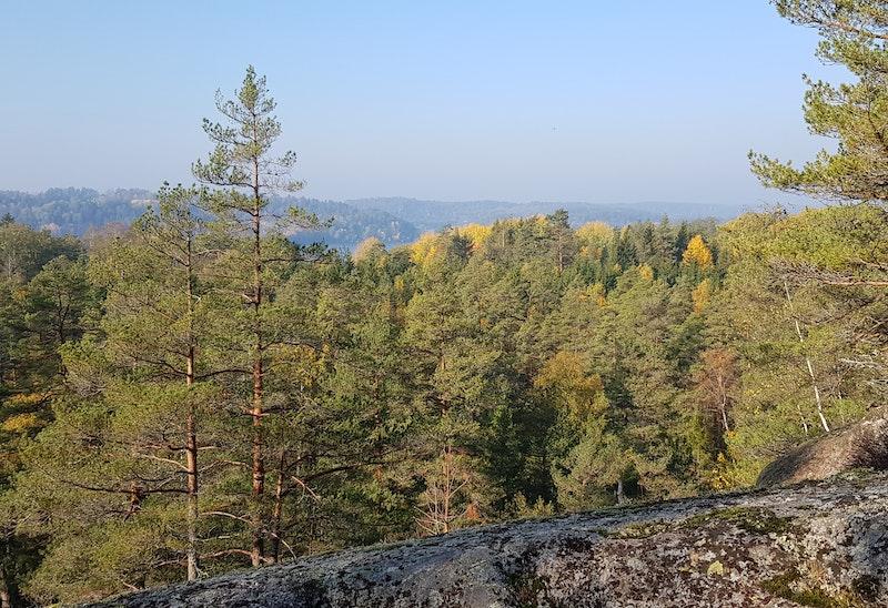 Odensvi – Dalhem – Björndalen, Tjustleden etapp 7