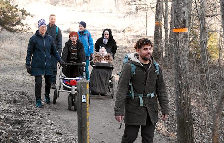 Sju personer promenerar på en bred stig i skogen. En går med rollator och en blir skjutsad i rullstol.