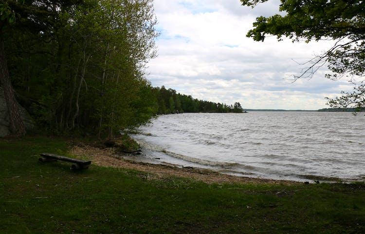 Liten vik i Mälaren. Närmast vattnet är det sand, för övrigt är det gräs. En bänk står på gräset.