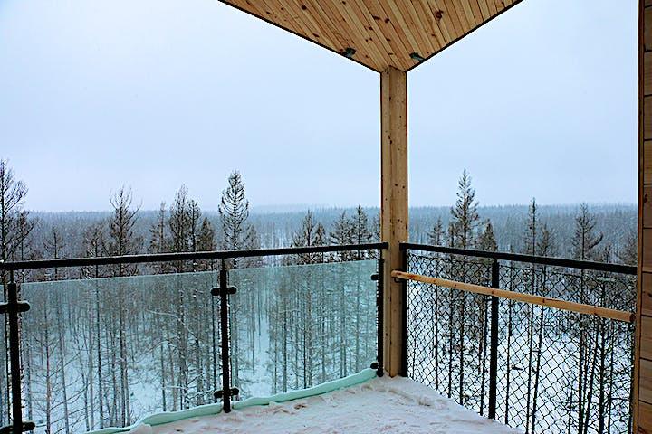 Utsikt över trädtoppar. Landskapet är snöigt och himmelen grå.