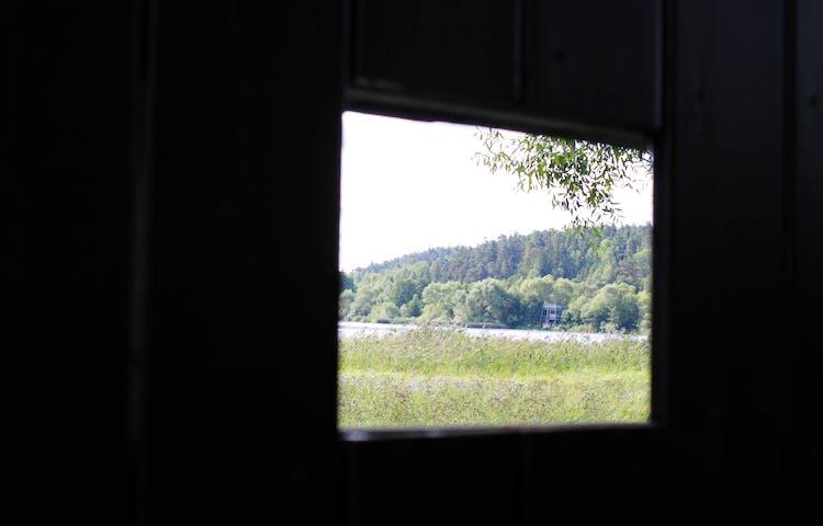 Genom ett litet fyrkantigt hål i fågelplattformens ena vägg har man utsikt över en strandäng och Fyrisån