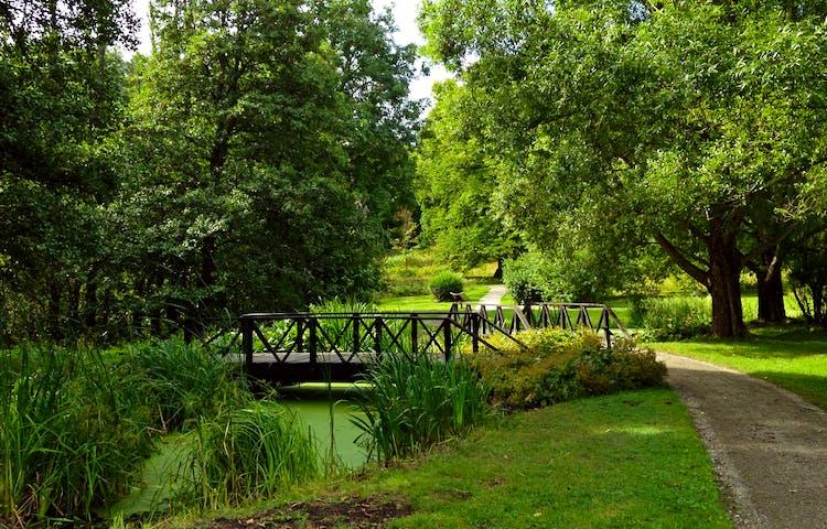Tullgarn har en vacker slottspark. Foto: Anna Lindblad