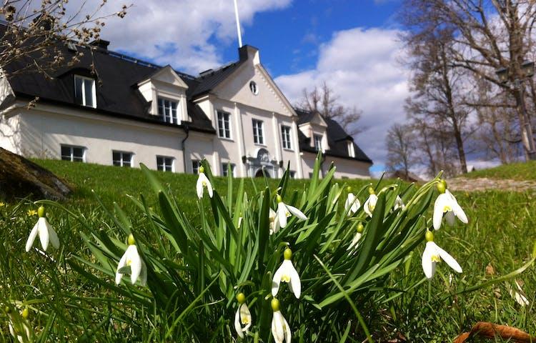 Hammarskogs Herrgård med snödroppar i förgrunden.