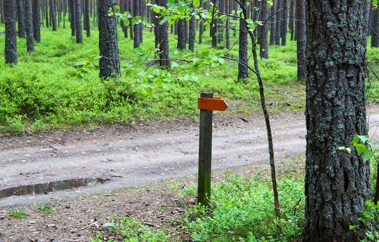 Stolpe med två orange pilar.