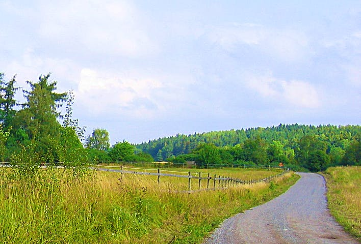 Liten grusväg och hage. Skogklädd ås i bakgrunden.
