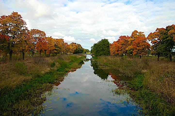 Ån ligger spegelblank. På sidorna tronar träd med höstensfärger.