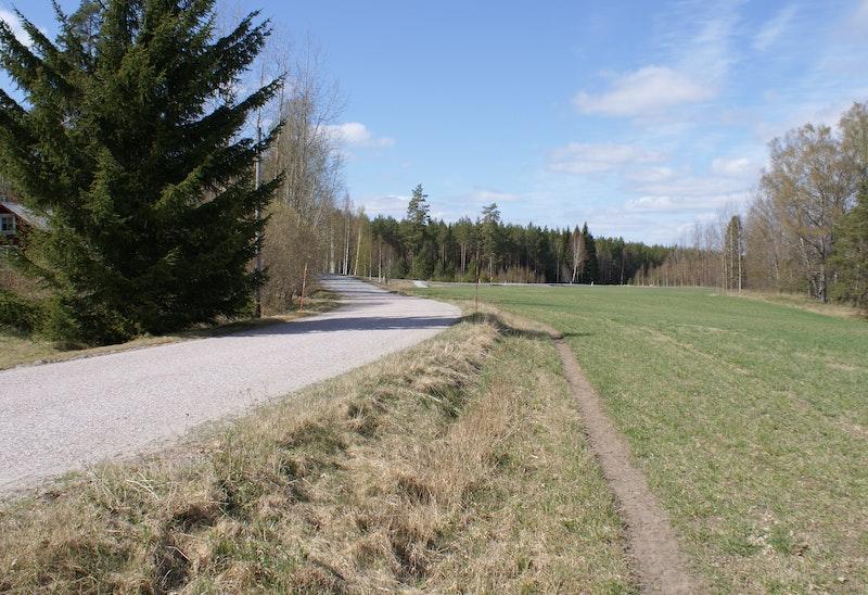 Ridstig/asfalterad väg i Bastmora