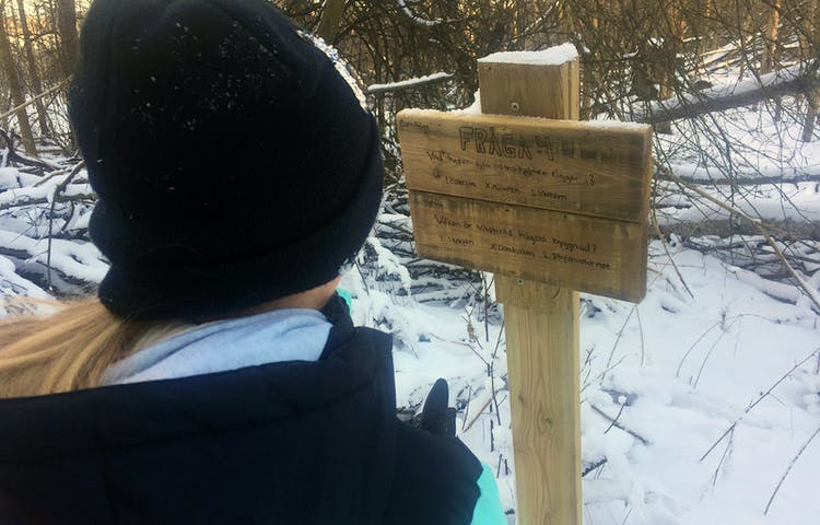 Ett barn med svart mössa läser frågor som står på en träskylt.