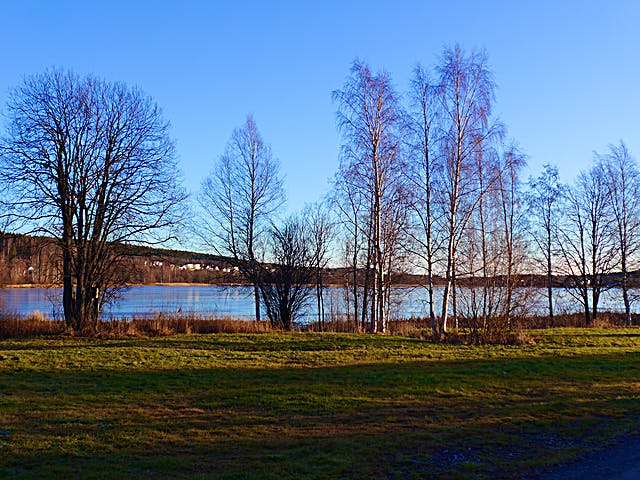 Utsikt över sjön. Foto: Olle Jonsson